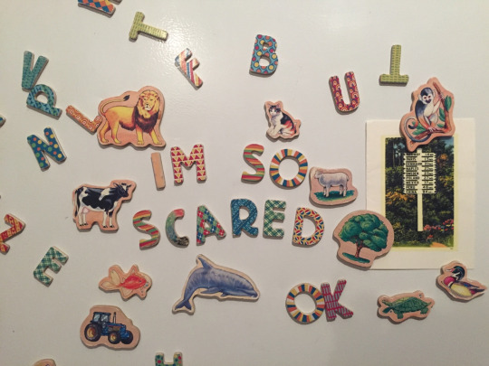 spelling magnets